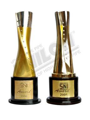 SNI Award Winner